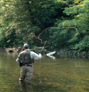 1 year later - Flyfisherman in LWD project site